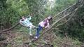 Unsere Baumschaukel