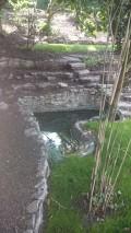 Unser herzförmiger kleiner Teich