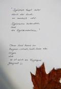 Dieses Lied kann man auch gerne bei einem Spaziergang durch den Herbstwald umsetzen. Ihr könnt es auch sprechen: laut, leise, verschlafen,langsam, schnell...